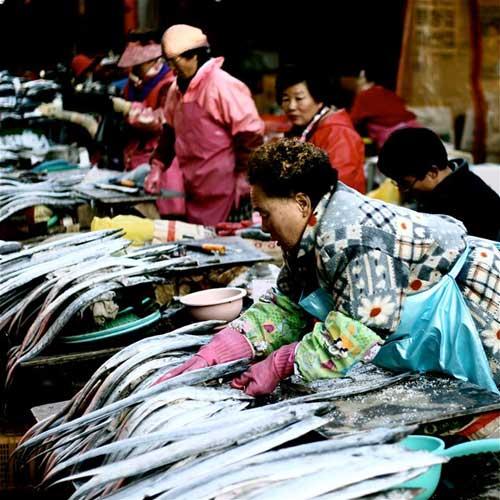 Đến thăm chợ hải sản Jagalchi nổi tiếng xứ Hàn - 1