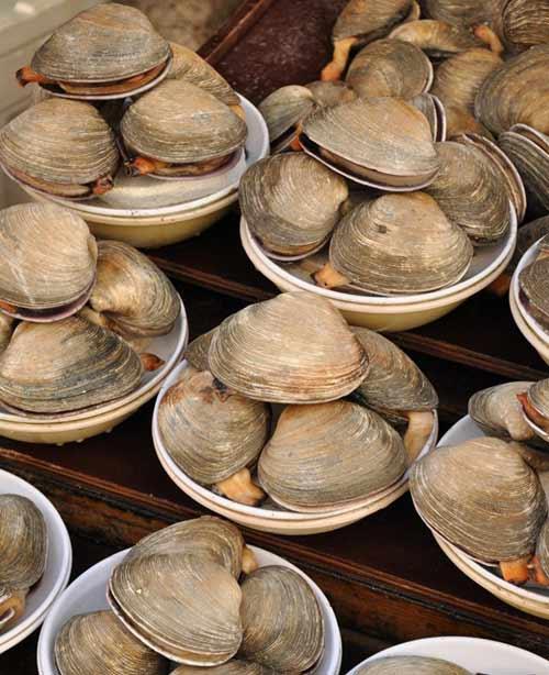 Đến thăm chợ hải sản Jagalchi nổi tiếng xứ Hàn - 9
