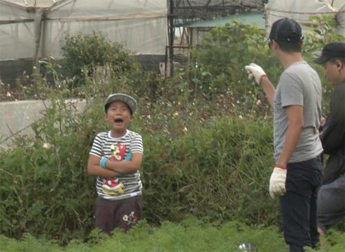 Hoàng Bách nghiêm khắc la mắng con trên truyền hình - 5