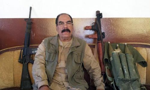 Bỏ cuộc sống yên ổn, cha con người Đức tới Iraq chống IS - 1
