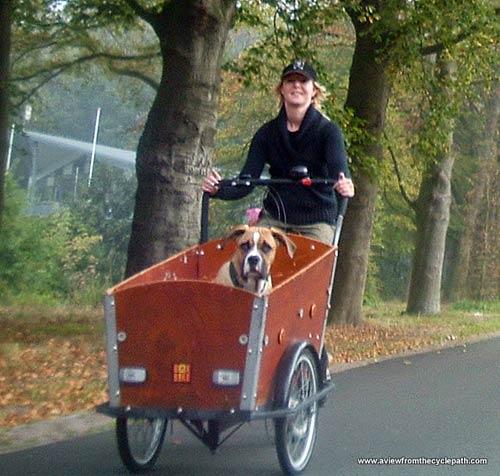 """Thú vị """"Vương quốc xe đạp"""" ở Hà Lan - 6"""