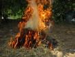 Bố chất rơm đốt con vì trộm vài gói mì tôm