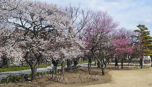 Ibaraki - Vẻ đẹp quyến rũ - 9