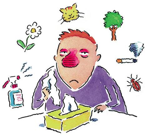 Kinh giới tuệ - Vị thuốc giúp giải mẫn cảm, ngăn ngừa viêm xoang - 1