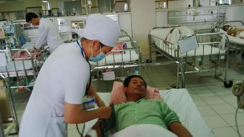 TT-Huế: Gần chục người nhập viện vì rắn lục đuôi đỏ cắn - 3