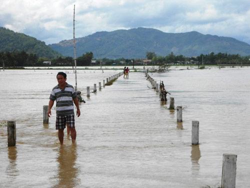 Bình Định:  Bão số 4 gây thiệt hại hơn 50 tỉ đồng - 1