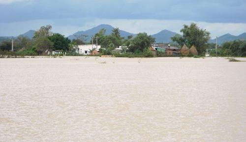 Bình Định:  Bão số 4 gây thiệt hại hơn 50 tỉ đồng - 2