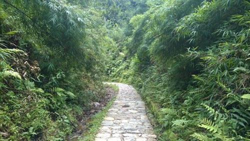 Thám hiểm dọc đường đèo Ô Quy Hồ hùng vĩ - 5