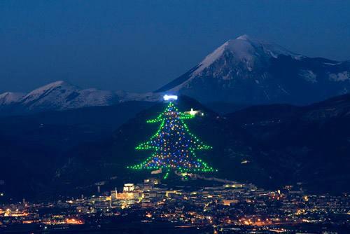 Choáng ngợp cây thông Noel cao bằng ngọn núi - 3