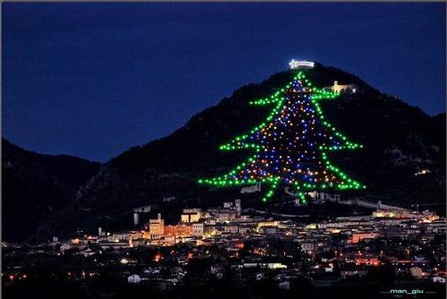 Choáng ngợp cây thông Noel cao bằng ngọn núi - 1