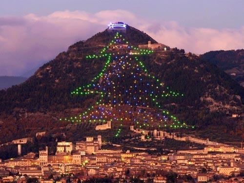 Choáng ngợp cây thông Noel cao bằng ngọn núi - 2