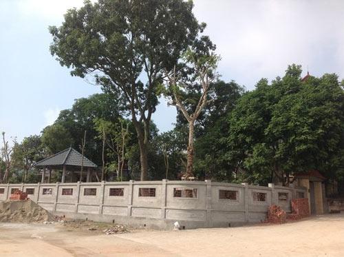 Phó chủ tịch tỉnh vừa về hưu lấn chiếm 400 m2 đất công - 2