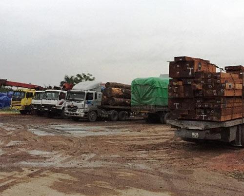 """Hải Dương: Bắt 8 xe chở gỗ quá tải cố tình """"né"""" trạm cân - 1"""