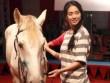 Ngô Thanh Vân chi tiền tỷ xây rạp xiếc làm phim