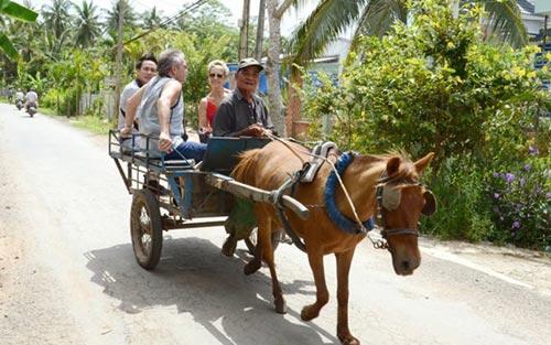 Về thăm vương quốc dừa xanh - 1