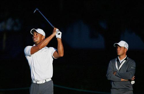 """""""Tái xuất"""", Tiger Woods lập tức tạo cơn sốt - 2"""