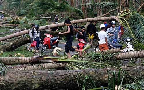 Bão Hagupit tàn phá Philippines, 2 người thiệt mạng - 9