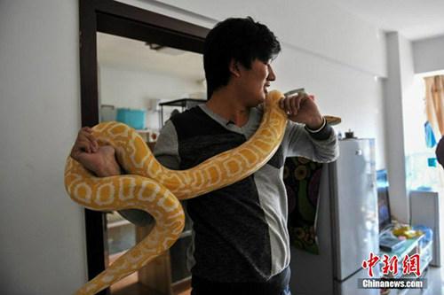 10 năm sống chung với 25 con rắn khổng lồ - 3