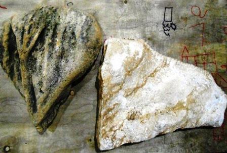 Phát hiện hóa thạch nghi là xương khủng long ở Thanh Hóa - 1