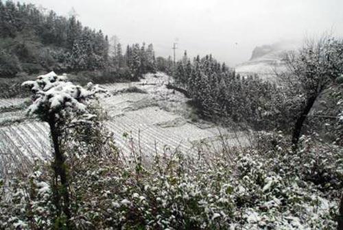 Tuyết rơi ở Lũng Cú?