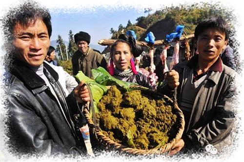 Lạ lùng món... lẩu phân bò ở Trung Quốc - 7