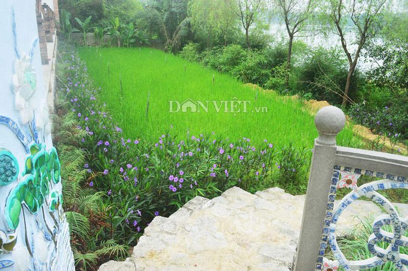 Chiêm ngưỡng nhà vườn Bến Xuân – nét đẹp quê xứ Huế - 4