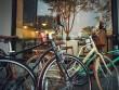 MOMENTUM iNeed – Coffee Family xe đạp thời trang cho mọi người