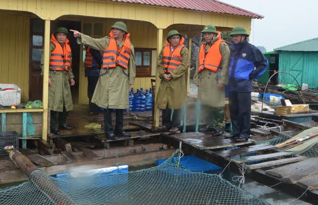 Quảng Ninh: Hơn 8.000 tàu thuyền về bờ tránh bão số 4 - 1