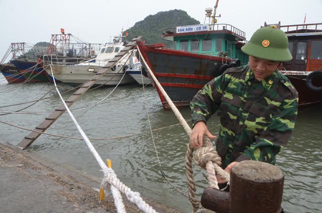 Quảng Ninh: Hơn 8.000 tàu thuyền về bờ tránh bão số 4 - 2