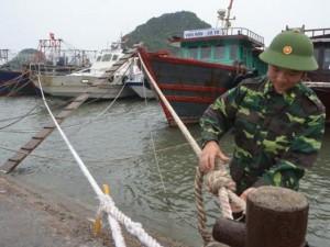 Quảng Ninh: Hơn 8.000 tàu thuyền về bờ tránh bão số 4