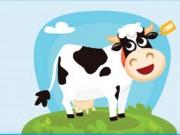 Ireland - Thiên đường của những cô bò hạnh phúc