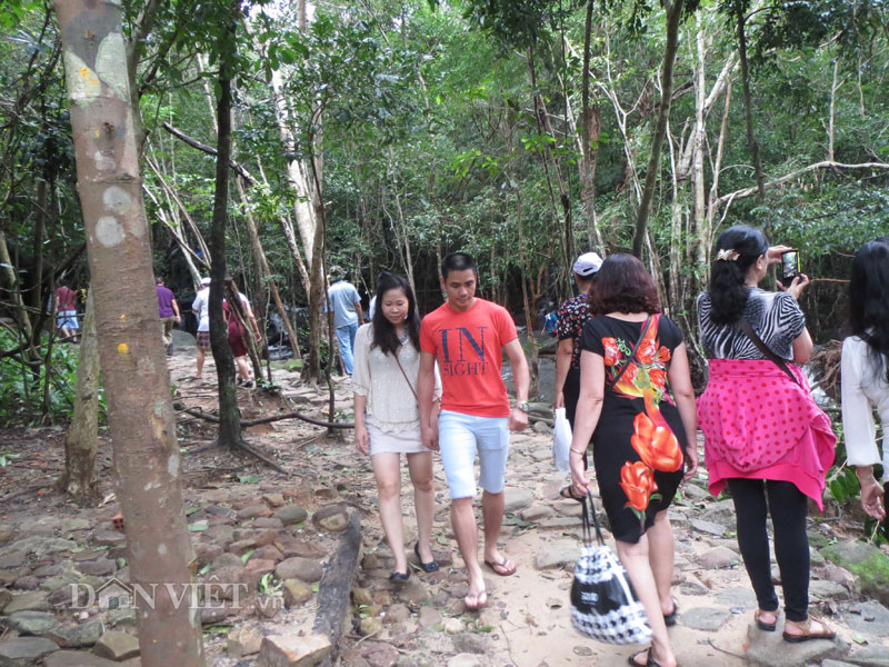 Xuyên rừng khám phá suối Tranh Phú Quốc đẹp như mơ - 1