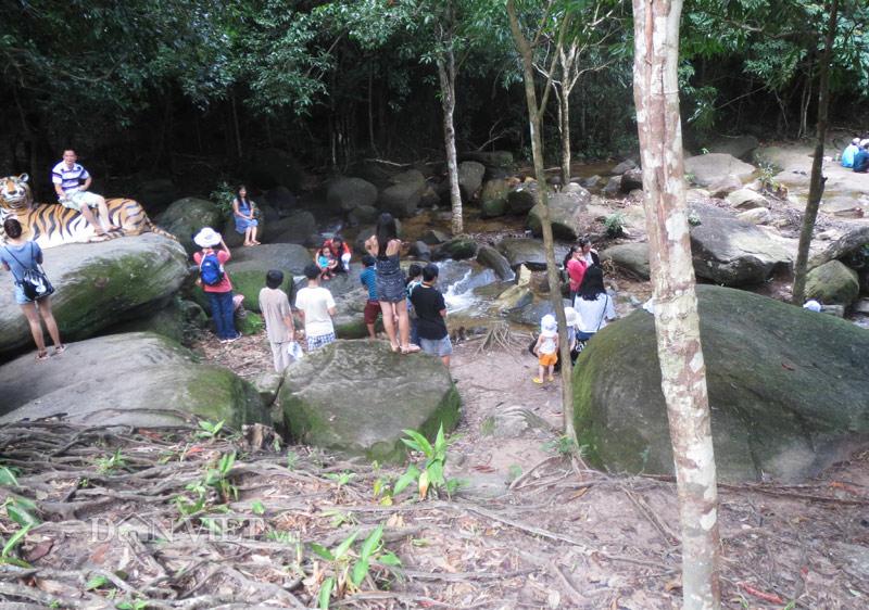 Xuyên rừng khám phá suối Tranh Phú Quốc đẹp như mơ - 4