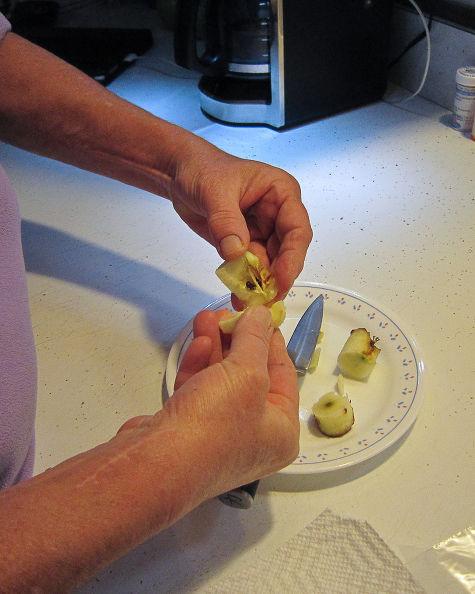 """""""Tuyệt chiêu"""" trồng táo trong chậu sai trĩu quả - 2"""