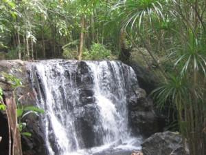 Xuyên rừng khám phá suối Tranh Phú Quốc đẹp như mơ