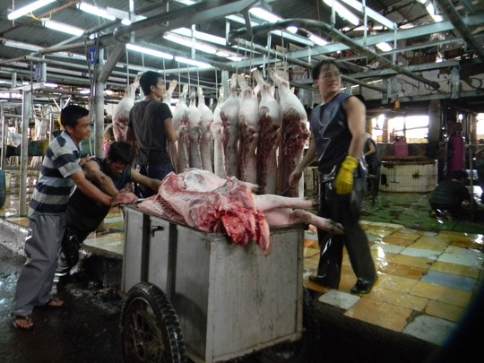 TPP: Cửa nào cho ngành chăn nuôi? - 1