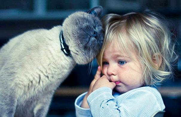 20 bức ảnh chứng tỏ bé nên có một bạn mèo - 6