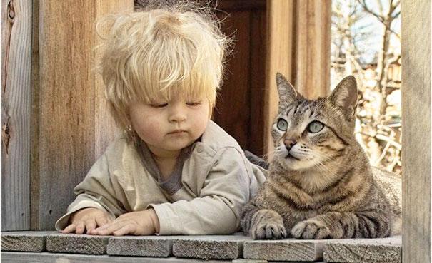 20 bức ảnh chứng tỏ bé nên có một bạn mèo - 16