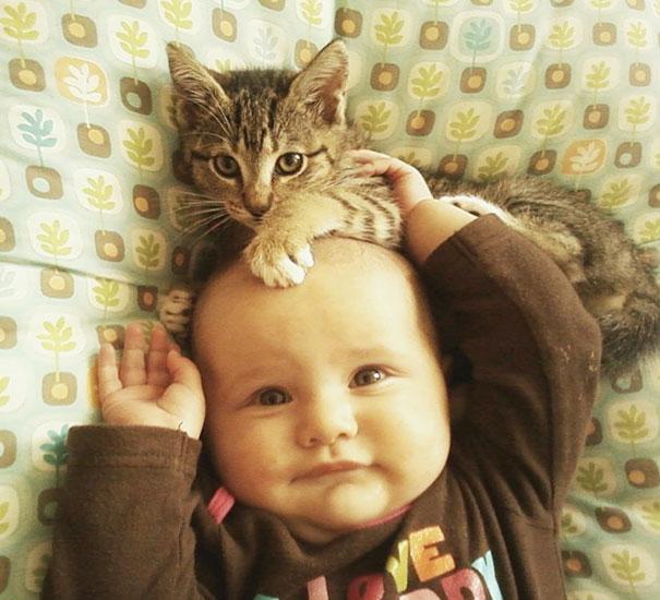20 bức ảnh chứng tỏ bé nên có một bạn mèo - 12