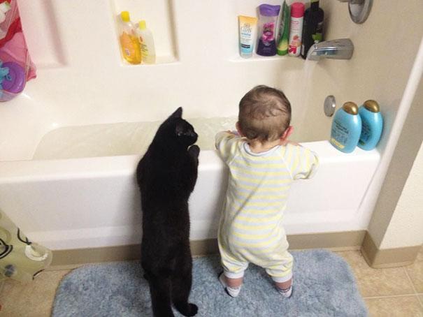 20 bức ảnh chứng tỏ bé nên có một bạn mèo - 5