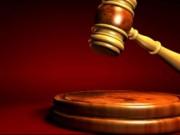 An ninh Xã hội - 12 tuổi theo kiện 15 năm trong kỳ án giết người