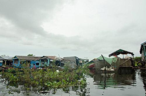 Nhói lòng cảnh trẻ em vượt sông tới trường - 10
