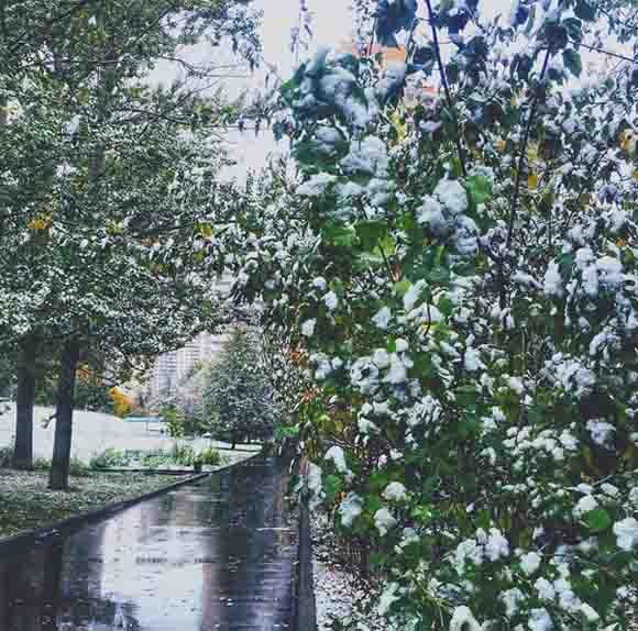 Tuyết đầu mùa phủ trắng thủ đô Nga - 3