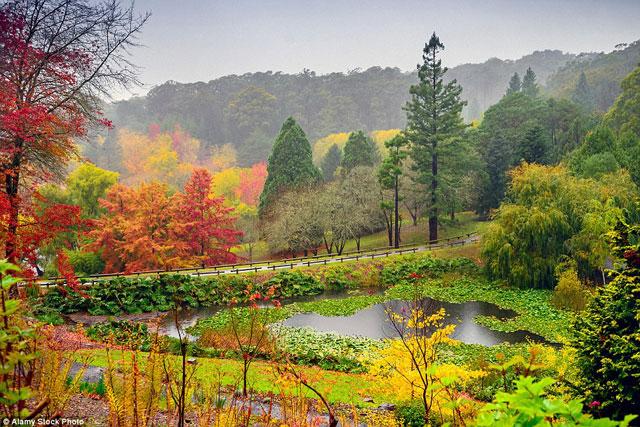 Lạc bước đến những nơi có mùa thu đẹp nhất thế giới - 12