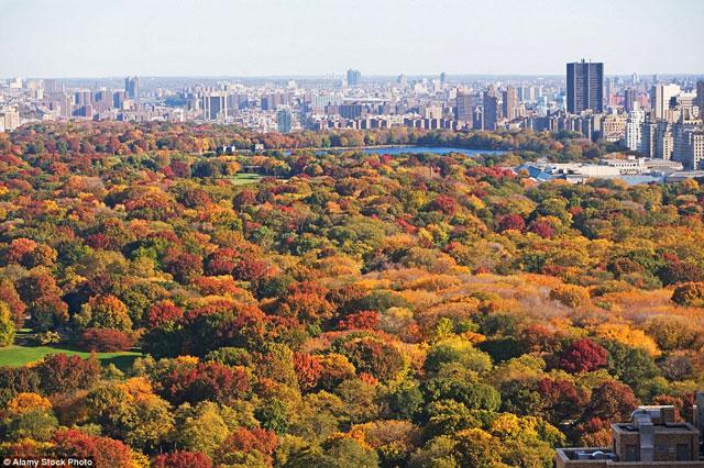 Lạc bước đến những nơi có mùa thu đẹp nhất thế giới - 2