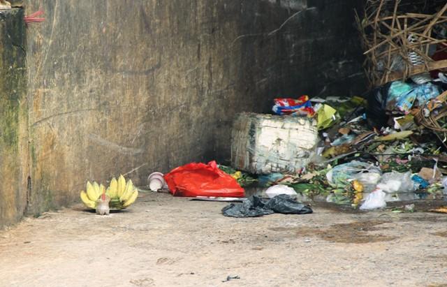 TPHCM: Phát hiện thi thể bé sơ sinh trong bãi rác - 1
