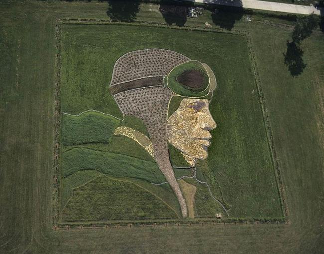 Stan Herd sử dụng những cánh đồng trồng cây nông nghiệp rộng lớn làm giấy vẽ còn cây trồng, đất, gạch đá làm nguyên liệu vẽ tranh và tạo nên những bức tranh vô cùng sinh động. Ông thường phác họa tranh trên giấy sau đó tạo những mảng tranh nhỏ trên cánh đồng và cuối cùng dùng máy kéo để cắt tỉa, tạo những hình ảnh cuối cùng lên mặt đất.