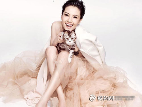 """Mèo """"hàng trăm triệu"""" làm thú cưng của người đẹp châu Á - 5"""