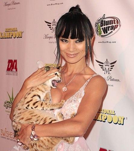 """Mèo """"hàng trăm triệu"""" làm thú cưng của người đẹp châu Á - 1"""