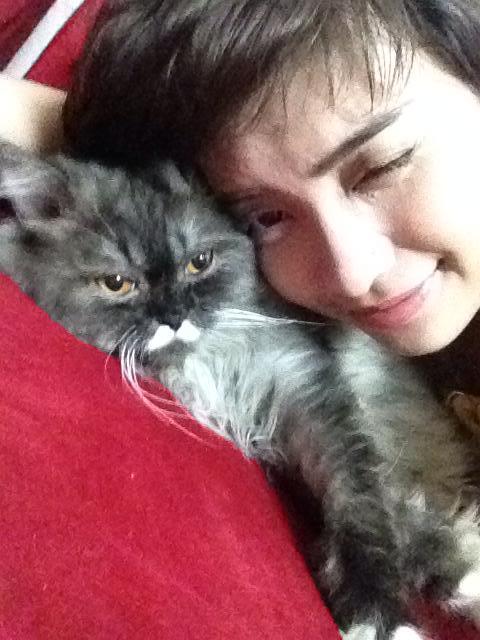 """Mèo """"hàng trăm triệu"""" làm thú cưng của người đẹp châu Á - 12"""